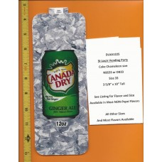 Large Coke Size Chameleon Soda Flavor Strip Canada Dry Ginger Ale 12oz CAN